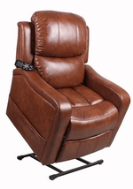 Therapedic Carson 3 Position Reclining Lift Chair